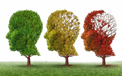 Monthly Nutritional Discussion: Can Proper Nutrition Help Reduce the Risk of Alzheimer's?