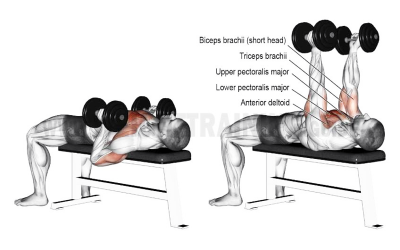 Monthly Movement: Hammer Grip Chest Press